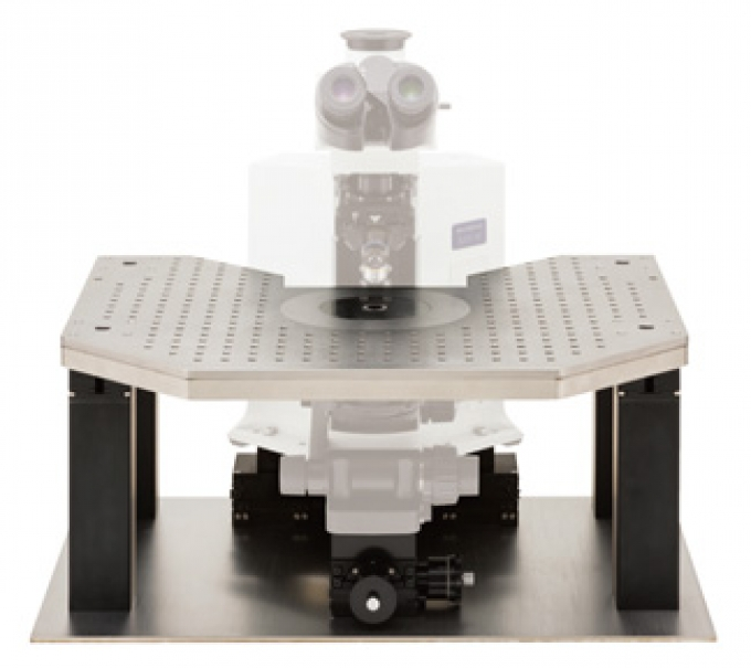 ITS2 Plateforme d'isolation pour microscope droit NARISHIGE