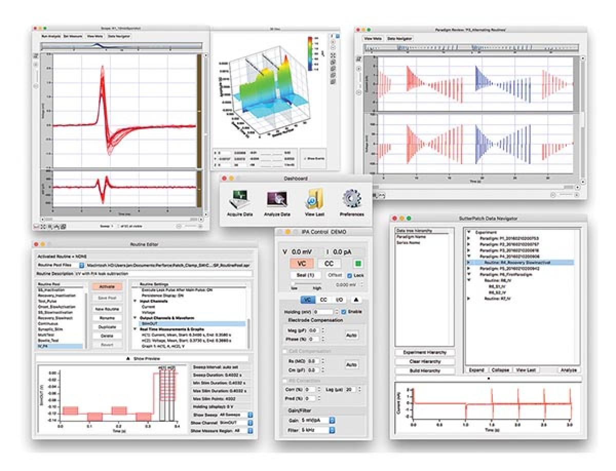 IPA/double IPA : système de patch intégré -2