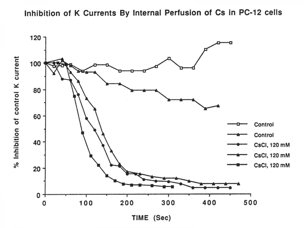2PK+ micro-perfusion par pipettes -2