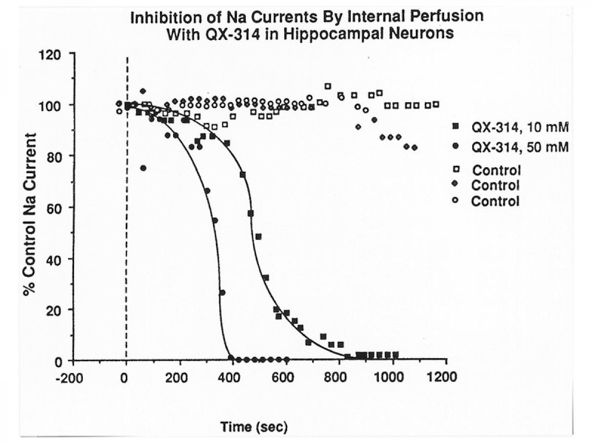 2PK+ micro-perfusion par pipettes -3
